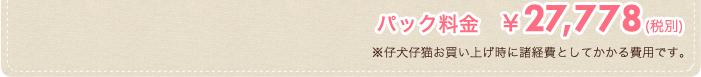 パック料金¥27,778